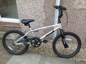 Boy's Anaconda all terrain bike