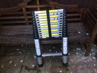 3.8 Metre Telescopic Ladder