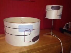 Lamp with shade and light shade set