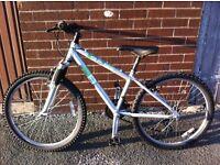 Silver mountain bike
