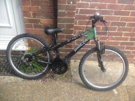 Boys X Rated Jump/Mountain Bike 18 Speed