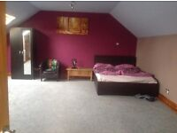 Double bedroom ensuite to let . Room size (23 ft x 17 ft )