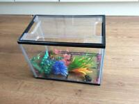Aquarium/ Fish tank small starter set