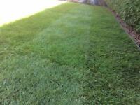 G&M Garden services, gardening, hedge trimming, weeding, grass cutting