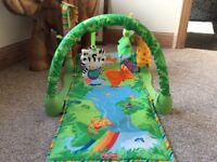 Baby fisher price gym play mat boxed