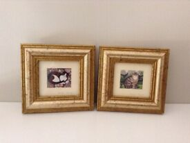 Pair of vintage miniature cat pictures