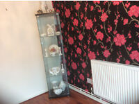 All glass display cabinet and Annsley Pembroke pottery