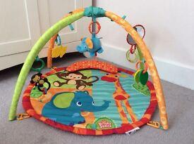 Baby unisex jungle gym