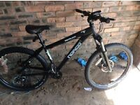 Norco rival hardtail