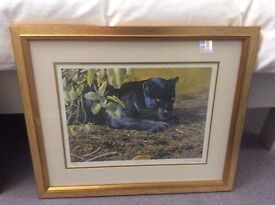 Two Stephen Gayford limited edition prints
