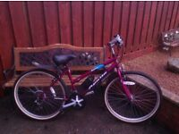 Ladies Apollo entice mountain bike vgc