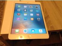iPad mini 1st gen 64 gb 4g unlocked