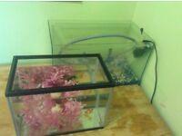 2x aquarium with 2 small goldfishes , stones, filter,plastic flowers,..