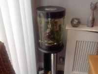 Biorb fish Aquarium with Stand