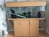 Fish tank with cabinet and assessories nearly new will accept £75.00