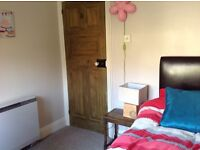 SINGLE ROOM for rent in family home nr Fiveways