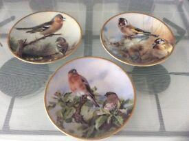 Davenport pottery ltd edition bird collectors plates x 3