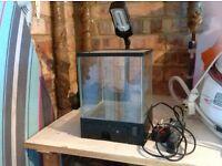 Small fish/shrimp tank 10litres