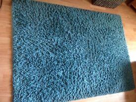 Teal shaggy rug
