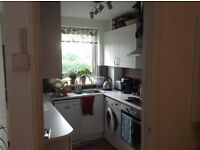 Homely, spacious 1 bed apartment, wifi, security entrance in Putney