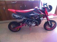 125 pro explorer pit bike