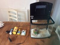 Fish tank, good condition, filter, light, food, and water additives