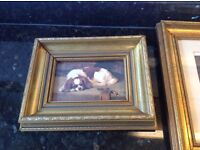 Collection of King Charles Spaniel pictures in nice frames