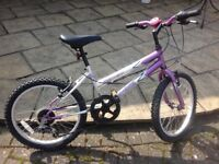 """child's bike 20"""" wheels, 6 gears, brakes and gears all in good working order"""