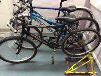 Raleigh Max Ogre Road Bike
