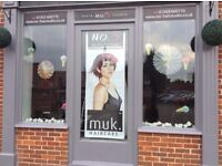 Full or Part Time Hairdresser / Stylist No. 5 Hair Studio Wymondham. Great Opportunity.