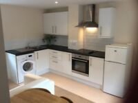 FANTASTIC 1 bed modern flat to rent - Old Town, Swindon. Near shops, bars, restaurants, train/ bus