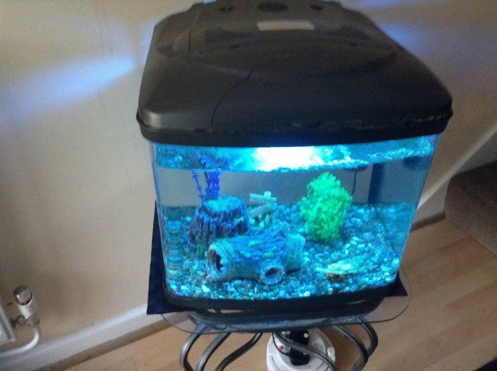 Fish & Aquariums Twin Light Unit Used But In Good Condition