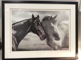 Horse picture in a frame