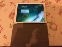 *** IPad Pro 12.9 cellular 128gb APPLECARE+ GOLD ***