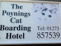 THE POYNINGS CAT BOARDING HOTEL