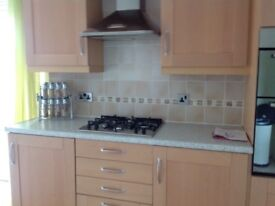 Beech kitchen with appliances