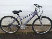 Adult Raleigh mountain bike for sale.