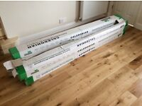 Brand new Solid Oak Flooring - Approx 10sq meters (18ml thick)