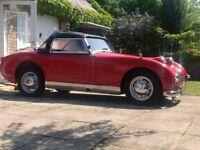 Austin Healey Frogeye Sprite 1958 9 studded windscreen