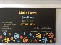 Little Paws Kenilworth ( Luxury Doggy Day Care).