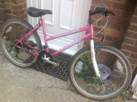 Ladies Retro Carrera Mountain Bike 21 speed