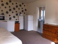 Attractive Self Contained Bedsit with Ensuite