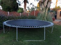 Free trampoline buyer collects.