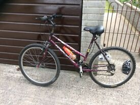 Ladies mountain bike perfect order just been serviced sitting in garage