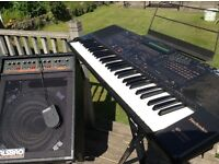 Keyboard, Technics Kn1000, with manual and stand plus Carlsbro 90 Amp