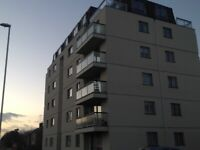 Wanted furnished flat in the Torquay area
