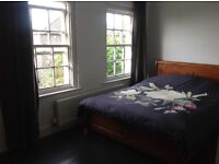 Lovely large double room available Mon - Fri's