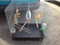 Large bird cage , travel parrot cage with extras