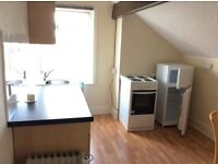 LG ATTIC FLAT ,1 BEDROOM EN-SUITE + SEPARATE KITCHEN, fully furnished council tax included