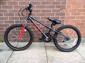 Apollo Spider Kids Bike C462